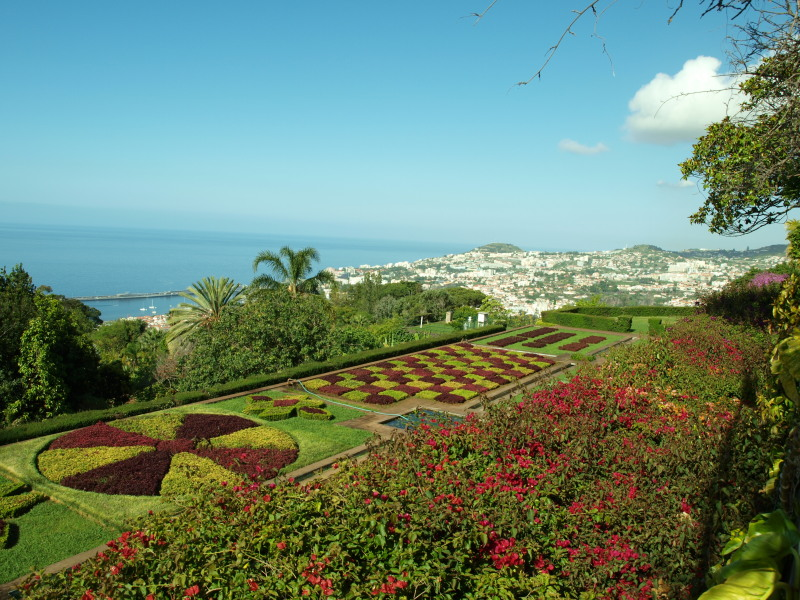 Botanische tuin in Funchal - Fly drive Madeira
